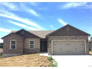 Single Family for sale in 0 Hawks Pointe Walnut Model, Hillsboro, MO, 63050