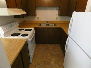 Apartment for rent in 231 Lauder Ave, Moscow, ID, 83843