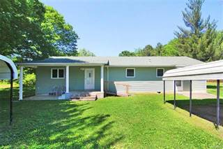 Single Family for sale in 19 Hwy E, HC 4 Box 19, Gipsy, MO, 63787