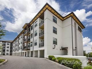 Apartment en renta en Azul Baldwin Park - B4, Orlando, FL, 32814