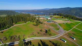 Farm And Agriculture for sale in 22456 S ANDERSON LAKE RD, Harrison, ID, 83833