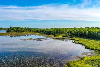 Lots And Land for sale in 32 AC on Chaney Lake Rd, Wakefield, MI, 49968