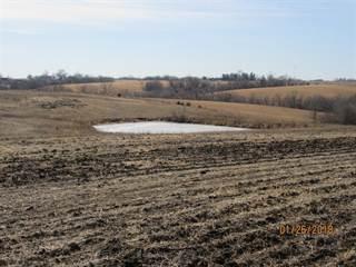 Land for sale in 0 220th Avenue, Osceola, IA, 50213