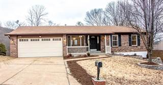 Single Family for sale in 2197 Meadow Drive, Barnhart, MO, 63012