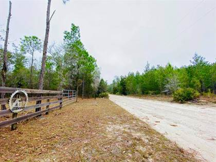 Lots And Land for sale in 880 Whitetail Dr, Perry, FL, 32348