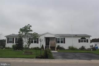 Single Family for sale in 1 LEONA DRIVE, Conowingo, MD, 21918