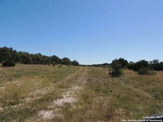 Farm And Agriculture for sale in 10974 US Highway 281 N, Spring Branch, TX, 78070