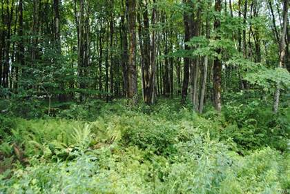 Lots And Land for sale in Lot 4 Fox Brook Road, Redfield, NY, 13493
