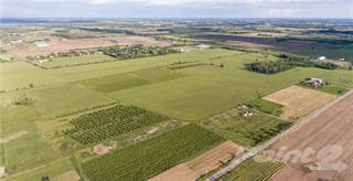 Farm And Agriculture for sale in 22-23 Bowslaugh Road, Grimsby, Ontario