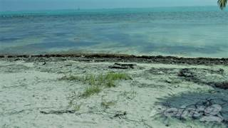 Land for sale in Mexico Rocks, Ambergris Caye, Belize