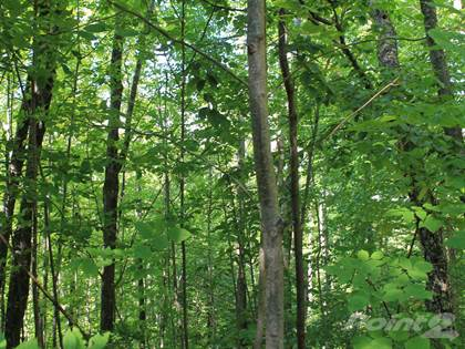 Lots And Land for sale in Lot 11 Alpine Shores Dr, Upson, WI, 54565