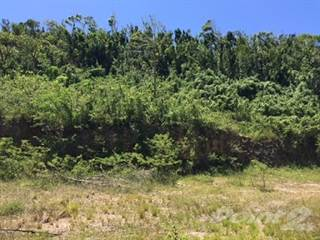 Land for sale in TERRENO DE 3856, Jayuya, PR, 00664