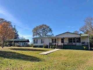 Residential Property for sale in 91782 MS-42, Richton, MS, 39476