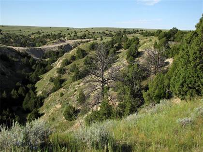 Lots And Land for sale in 28 Crimson Sage Road, WY, 82222
