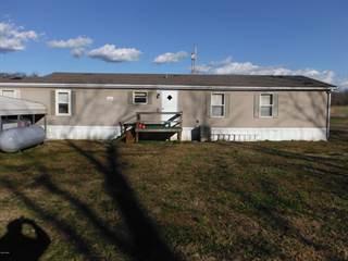 Residential Property for sale in 160 Old Cape Road, Jonesboro, IL, 62952