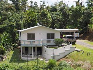 Residential Property for sale in Bo Mariana Sector Cabrito, Mariana, PR, 00791