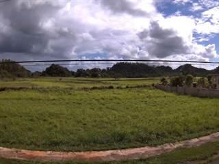 Single Family for sale in D-7 JARDINES DEL JUNCO, Arecibo Municipality, PR, 00612