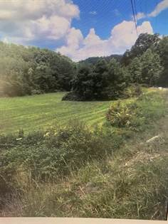 Lots And Land for sale in 0 SPURLOCK BRANCH, Prestonsburg, KY, 41653