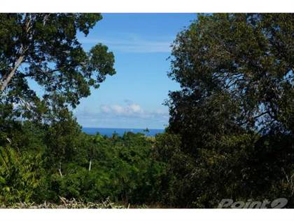 Lots And Land for sale in One Acre of Land, Ocean View, No HOA Fees, Sosua, Puerto Plata