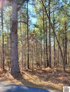 Lots And Land for sale in 0 W Unity Church Road, Hardin, KY, 42048