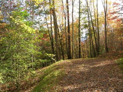 Lots And Land for sale in Lot 28 Thomas Divide Way, Cherokee, NC, 28719