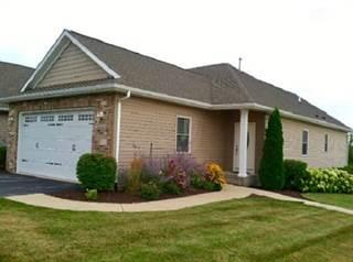 Condo for sale in 1603 Warrenton, Byron, IL, 61010