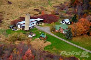 Farm And Agriculture for sale in 55 Dailey Road, Gouverneur, NY, 13642