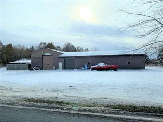 Commercial for sale in 8612 Stevensville-Baroda Road, Baroda, MI, 49101