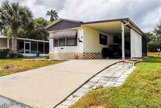 Residential Property for sale in 9 Lake Griffin Drive, Fruitland Park, FL, 34731