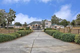 Single Family for sale in 900 SE 87th Street, Ocala, FL, 34480