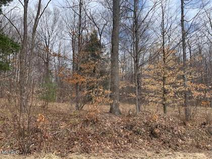 Lots And Land for sale in 28.5 Acres 220th Avenue, Reed City, MI, 49677