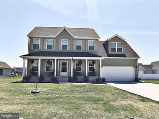 Single Family for sale in 145 KENMOUNT, Felton, DE, 19943
