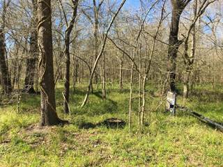 Land for sale in Tbd County Road 2853 Off Of and 2854, Cleveland, TX, 77535