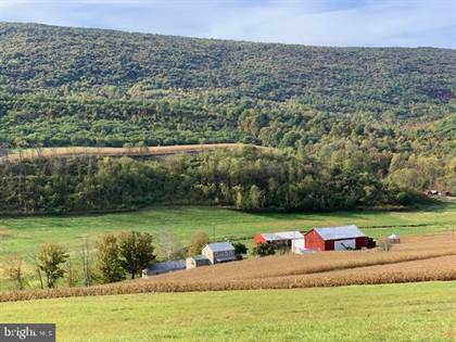 Farm And Agriculture for sale in 14980 HILL VALLEY ROAD, Greater Shirleysburg, PA, 17066