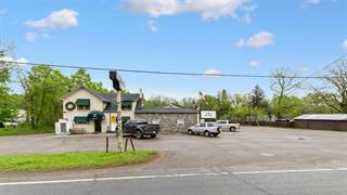 Comm/Ind for sale in 13996 N Territorial Road, Chelsea, MI, 48118