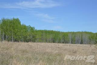 Farm And Agriculture for sale in TSP 640 & Hwy 897, Cold Lake First Nation, Alberta