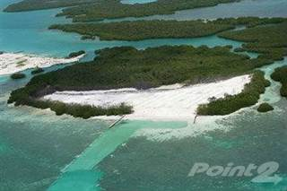 Land for sale in Turtle Caye, Islands, Belize