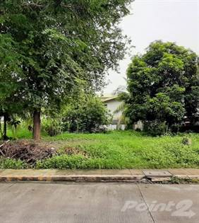 Lots And Land for sale in PRIME VACANT LOT FOR SALE IN UPS2, SAINT MARTIN DE PORRES, PARANAQUE CITY, Paranaque City, Metro Manila
