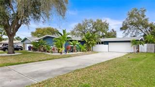 Single Family for sale in 1997 CHURCH CREEK POINT, Largo, FL, 33774
