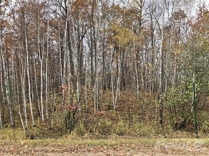Lots And Land for sale in 0 30th Ave, Birchwood, WI, 54817