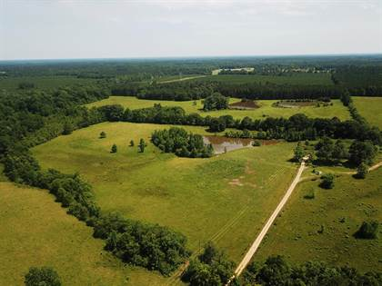 Lots And Land for sale in 14400 Hwy 98 East, Smithdale, MS, 39664