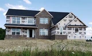 Single Family for sale in 10227 Valley Farms Road, Saline, MI, 48176