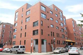 Apartment For Rent In Casa Maria Apartments   1 Bed 1 Bath, Boston, MA