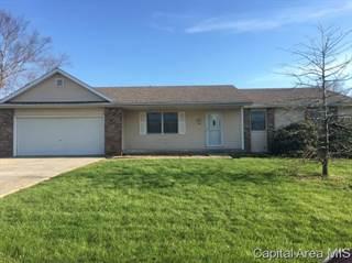 Single Family for sale in 196 JOAN DR, Greater Auburn, IL, 62530