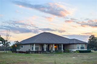 Single Family for sale in 8206 EARLWOOD AVENUE, Mount Dora, FL, 32757
