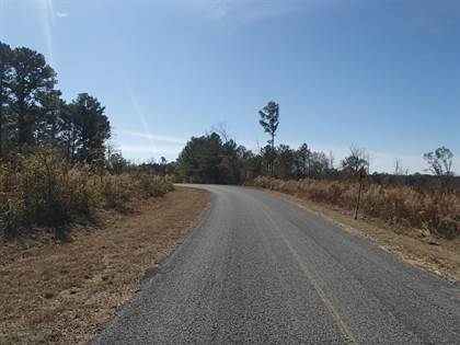 Lots And Land for sale in Union Ridge Rd, Noxapater, MS, 39346