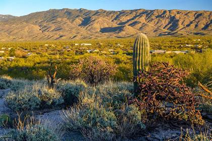 Lots And Land for sale in TBD S Pinto Place parcel 2, Tucson, AZ, 85748