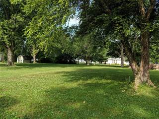Land for sale in 2119 North 4th Street, Fayetteville, IL, 62258