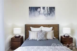 Apartment for rent in Gunbarrel Center - C2, Boulder, CO, 80301