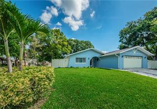 Single Family for sale in 2383 GROVE LAKE CIRCLE, Palm Harbor, FL, 34683